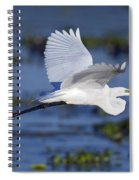 The Elegant Great Egret In Flight Spiral Notebook