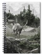 The Elk Painterly 2 Spiral Notebook