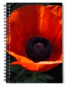 The Empess In Red Spiral Notebook