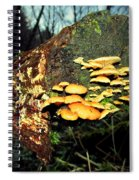 The End Is Just The Beginning Spiral Notebook