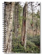 Birdhouse Neighbourhood Hamilton Marsh  Spiral Notebook