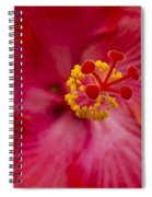 The Expression Of Love Spiral Notebook