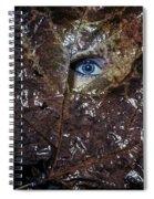 The Eye Spiral Notebook