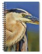 The Eye Of Blue Spiral Notebook