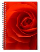 The Eye Of Love Spiral Notebook