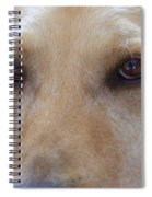 The Eyes Say It All Spiral Notebook