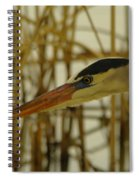 The Face Of A Heron Spiral Notebook