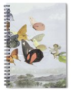 The Fairy Queen's Carriage Spiral Notebook