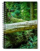 The Fallen Collection 12 Spiral Notebook