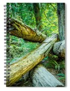 The Fallen Collection 8 Spiral Notebook