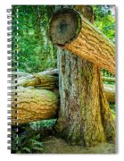 The Fallen Collection 9 Spiral Notebook