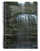 The Falls From Below Spiral Notebook