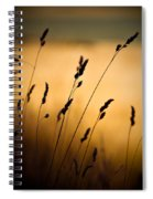 The Field Spiral Notebook