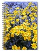 The Field Of  Wonder Spiral Notebook