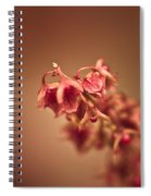 The Fire Within Spiral Notebook