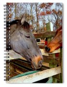 The First Date Spiral Notebook