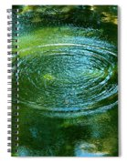 The Fish Pond Spiral Notebook