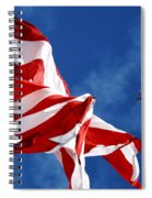 The Flag And The Blue Angels Spiral Notebook