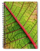 The Flipside Spiral Notebook