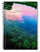 The Flow - Paint Spiral Notebook