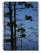 The Flowering Scape Of Agave Sisalana Perrine Sisal Hemp Kanaio Maui Hawaii Spiral Notebook