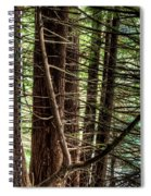 The Forest Combed By The Wind In The Lake Spiral Notebook