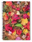 The Forest Floor Spiral Notebook