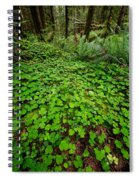 The Forest Floor Spiral Notebook
