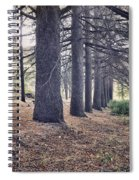 The Forest Of A Thousand Stories Spiral Notebook