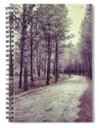 The Forest Road Retro Spiral Notebook