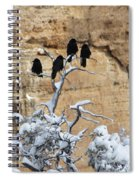 The Four Crows Spiral Notebook