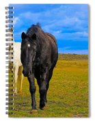 The Four Musketeers Spiral Notebook