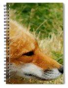 The Fox 7 Spiral Notebook