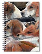 Fox Play Spiral Notebook