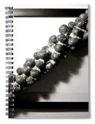 The Framing Of Brussels Sprouts Spiral Notebook