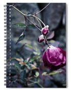 The Friday The 13th Rose Spiral Notebook