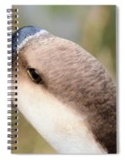 The Friendly Guy Spiral Notebook