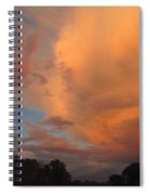 The Fury And The Beauty Spiral Notebook