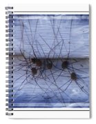 The Gathering - Long Leg Spiders Spiral Notebook
