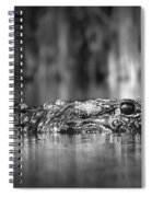 The Gator Spiral Notebook