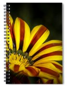 The Gazania Spiral Notebook