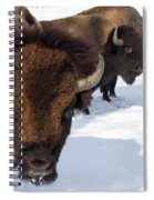 The General And His Troups Spiral Notebook