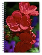 The Geraniums Spiral Notebook