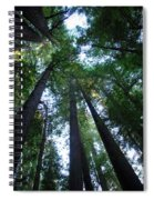 The Giant Redwoods I Spiral Notebook