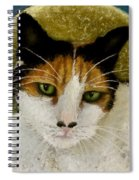 The Gifted Healer Spiral Notebook