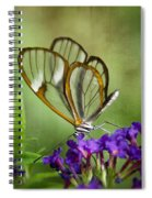 The Glasswing  Spiral Notebook