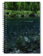 The Glimmer Of Maroon Lake Spiral Notebook