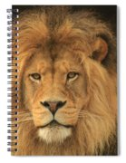 The Glory Of A King Spiral Notebook