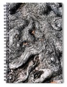 The Gnarled Old Tree Spiral Notebook