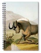 The Gnoo, 1804 Spiral Notebook